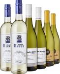 Sauvignon Blanc Tasting