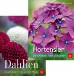 Hortensien und Dahlien für jeden Garten.