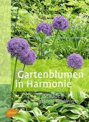 Gartenblumen in Harmonie - Stauden gekonnt kombinieren.