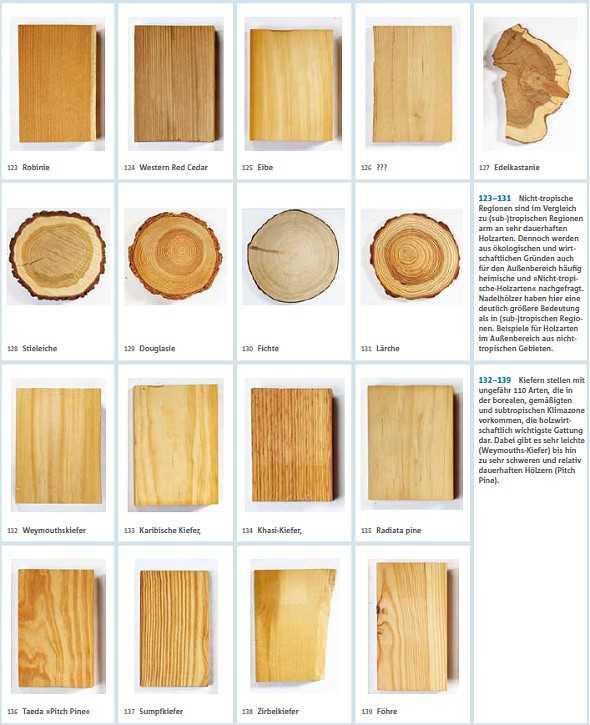 Verwendung von Holz im Außenbereich. | medienservice ...