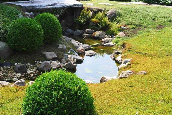 GaLaBaufachbuch Attraktive Gartengestaltung mit Wasser