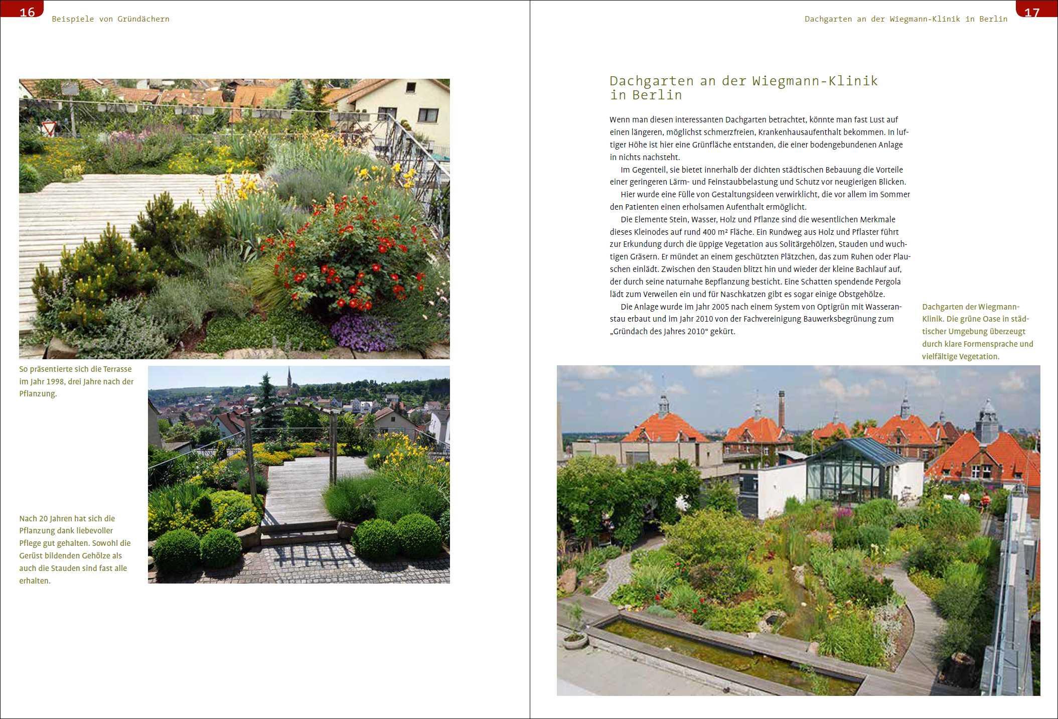 Wiegmann Klinik dachbegrünung. | medienservice architektur und bauwesen